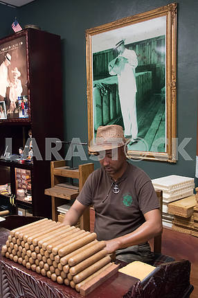 Folding cigars in tobacco store. Little Havana. Miami