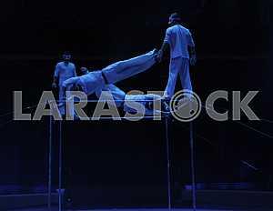 """Tour season of the circus """"Kobzov"""" in Kiev"""