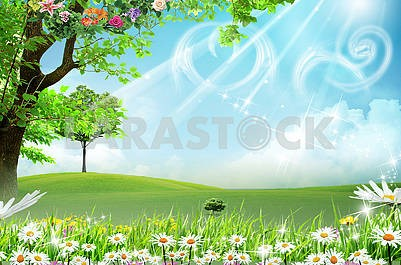 Landscape background, daisies, flowering trees, green meadow, sky