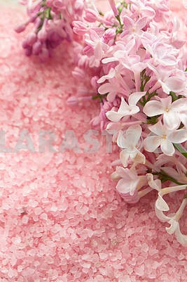 Lilac flower and bath pink salt top view background, background for wedding card