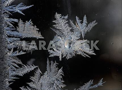 On a dark background of a window patterns, drawn by frost.