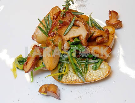 Potato on house with ceps