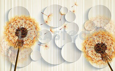 3D illustration, light background with circles and orange dandelions