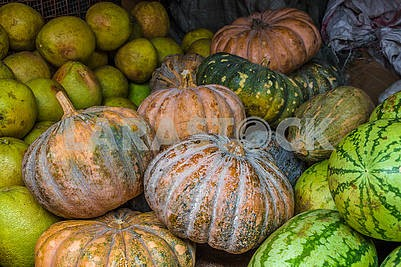 Pumpkins and watermelons
