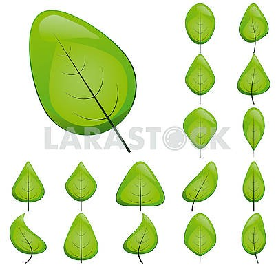 Collection of green shiny leaf icons