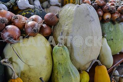 Pumpkins of different varieties of onions in the market.