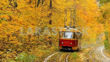 Forest tram line to Puscha-Voditsa, Kiev