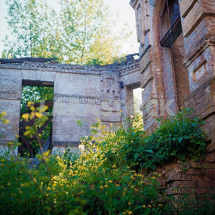 The ruins of the mansion in the village of Great Bukrin