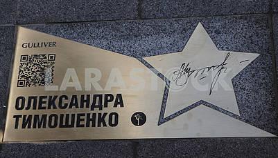Звезда Александры Тимошенко