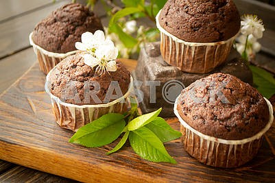 Chocolate maffins with cherry flowers on rustic table