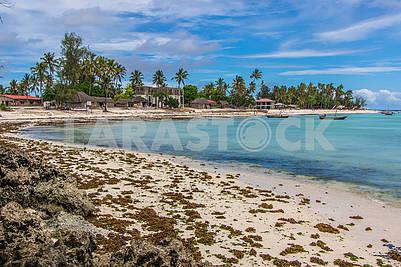 Landscape of the Indian Ocean