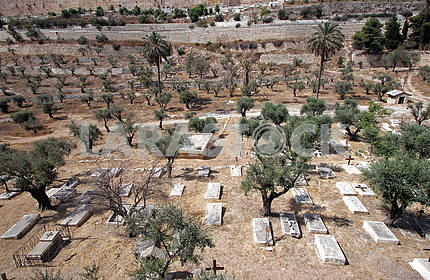 Christian cemetery on the Mount of Olives in Jerusalem