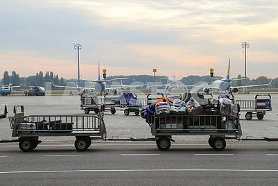 Trolleys with luggage and airplanes