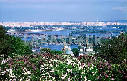 Blooming lilac and Vydubetsky monastery