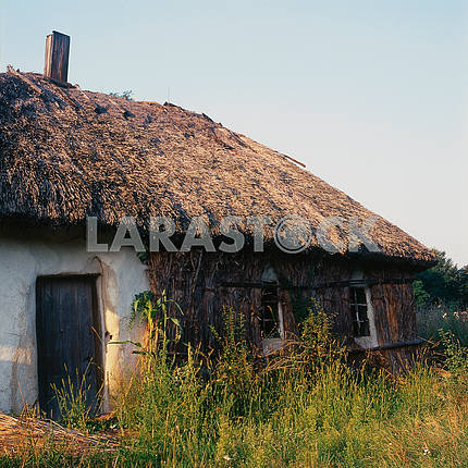 Before winter, the northern wall of a traditional Ukrainian home covered with reeds. summer 2008