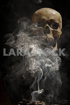 Smoke cigars on the background of a human skull