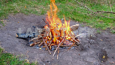 Bonfire from the branches in the forest