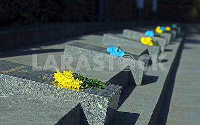 Flowers on the graves