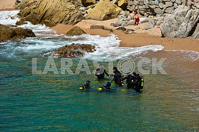 Divers preparing to dive into the sea