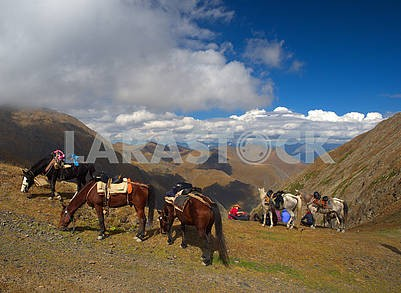 Horses graze on a mountain pass