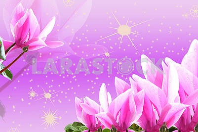 3d illustration, pink and purple background, sparkles, pink lilies, water droplets on buds