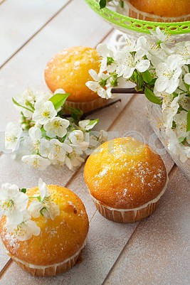 Golden muffins with cherriy flowers on shabby table