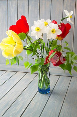 Spring bouquet with red and yellow tulips and narcissus. Fresh flowers. Colorful bouquet of fresh spring flowers on blue background.