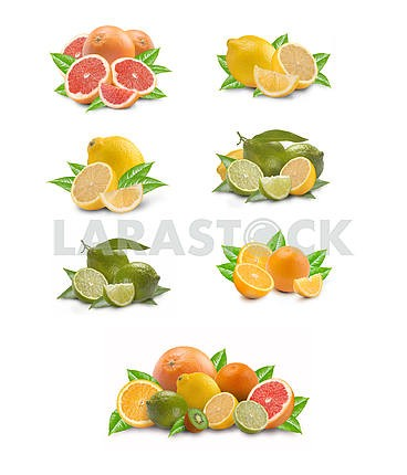 Collection of citron fruit