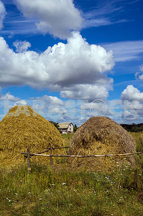 Two stacks of hay on a background of blue sky with white clouds