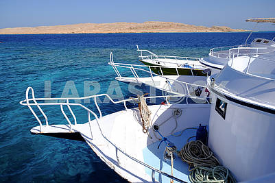 Yachts in the Red Sea