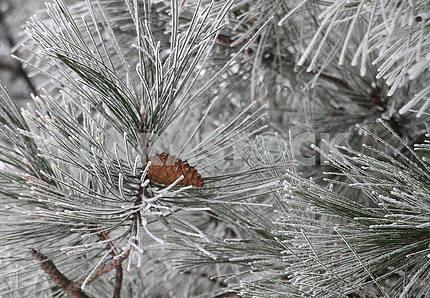 Winter landscape in Mariupol