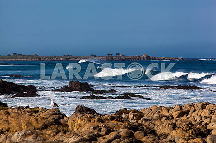 Waves on the shore of the Pacific Ocean