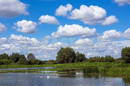 Blue sky with clouds over the lake. Nikolayevka. Chernihiv region