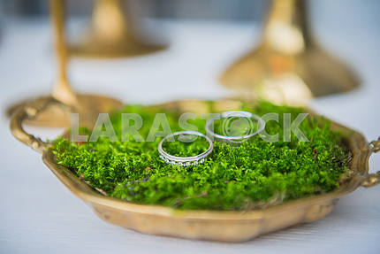 wedding decorations - wedding rings for bride and groom on the golden metal plate  and natural moss
