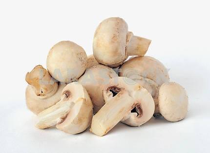 White field mushrooms