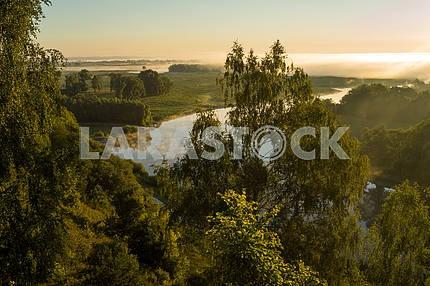 Desna River through the trees. The village of Mezin. Chernihiv region