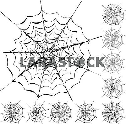 Set of 11 different spider webs