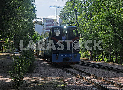 Train on the railway track