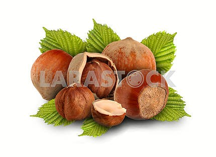 Whole hazelnuts and nuts with the leaves