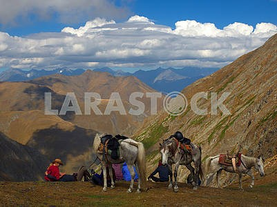 Tourists and horses on the pass