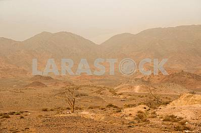 Eilat mountains reserve