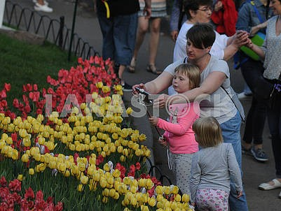 "Tulips Festival ""Around the World"""
