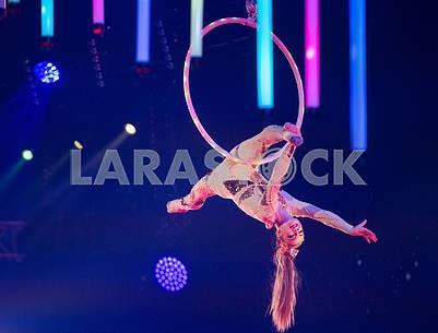 Circus number
