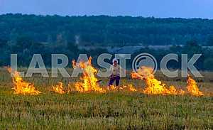 Pal grass - burning dry last year's grass.