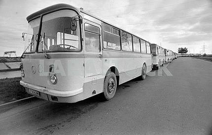 A column of buses near the Chernobyl nuclear power plant
