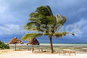 Zanzibar during the rainy season