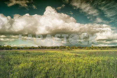 Beautiful cumulus clouds over meadows and fields in the valley
