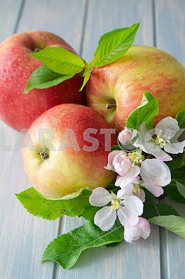 Ripe apples with leaf and flowers close up, vertical image