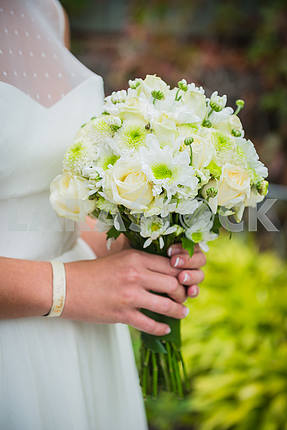 A bride holding the wedding bouquet in her hands made of white roses and green chrysanthemum