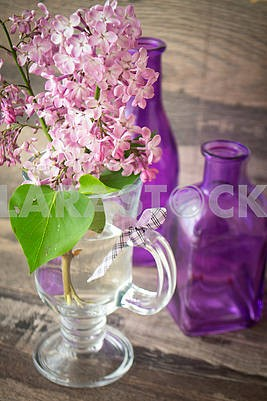 A branch of fresh lilac with flowers in the rays of sun standing in a bottle of water. Decorated with violet bottles